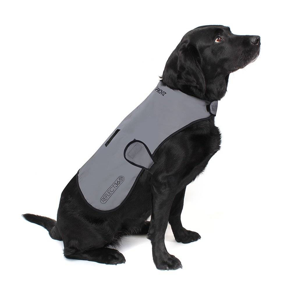 Proviz - REFLECT360 Waterproof Dog Jacket - Small