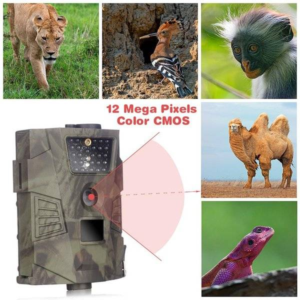 DHgate camcorders fhd gprs hunting trail camera hd 12mp stealth vision scouting infrared for taking