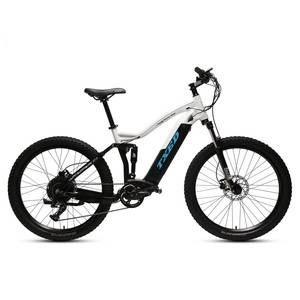 Mountain Electric Bike Canada US Market 750W Motor Electric Bike