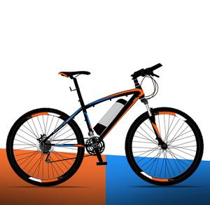 New Fashion 36V 250W Motor 10Ah Lithium Battery Electric Delivery Bike 26 Inch F V Brake R Disk Brake Ebike Sport