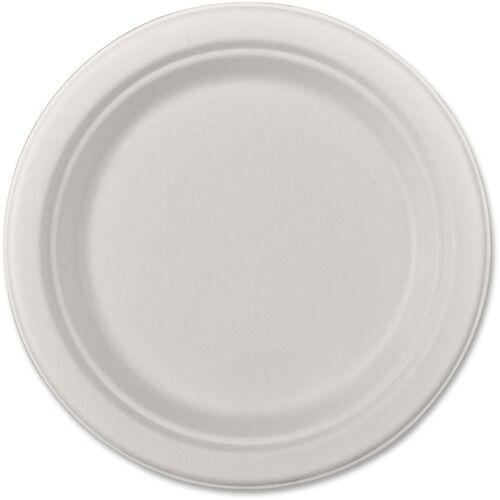 """SCT ChampWare Heavyweight Bagasse Dinnerware, Plate, 9"""", White, 500/Carton"""