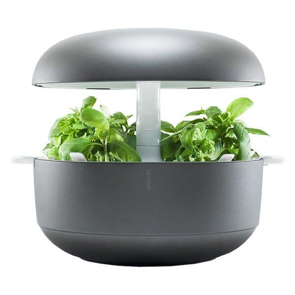 Plantui Smart Garden 6, grey