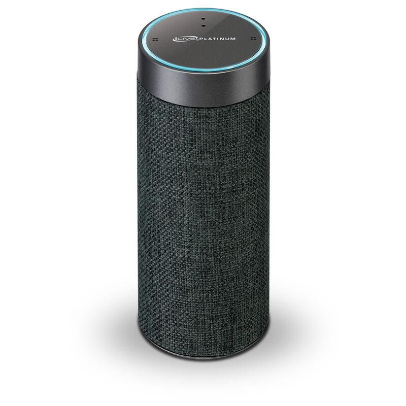 Alexa Wireless Bluetooth Portable Speaker