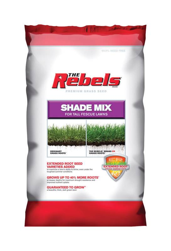 Pennington Seed The Rebels Tall Fescue Shade Grass Seed 20 lb.