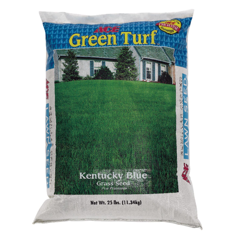 Ace Kentucky Bluegrass Sun/Shade Grass Seed 25 lb.