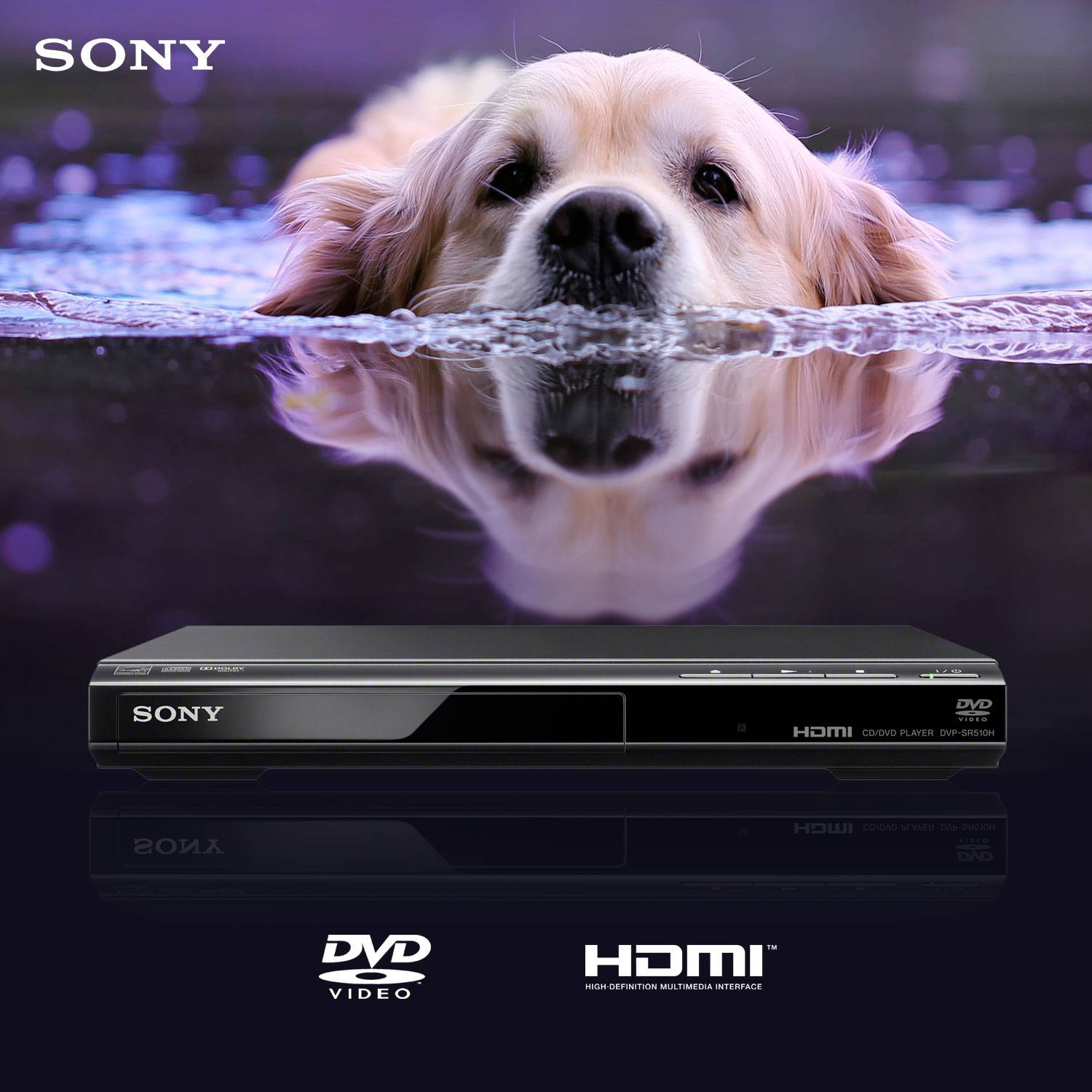 Sony DVPSR510H - DVD Player w/ 6ft High Speed HDMI Cable
