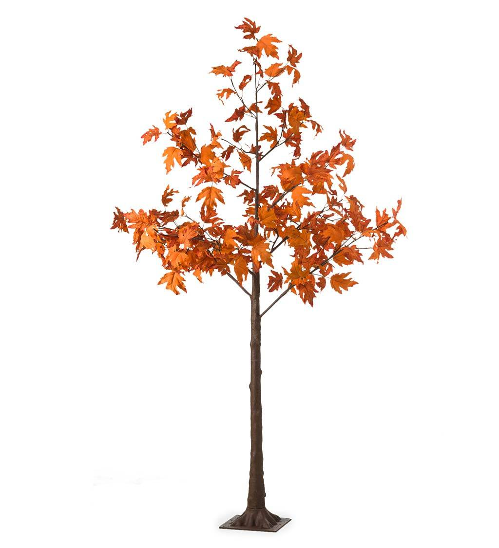 HAIRUI DECORATION LIGHTS/CP Indoor/Outdoor Electric Lighted Maple Tree, 6'H with 96 Lights