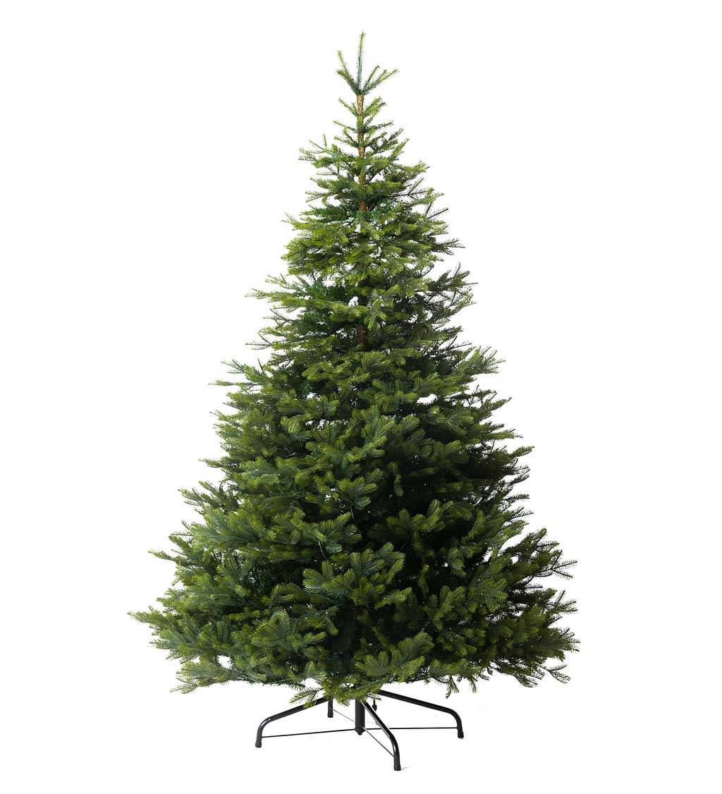 KAEMINGK INTERNATIONAL 9' Arlberg Fir Christmas Tree