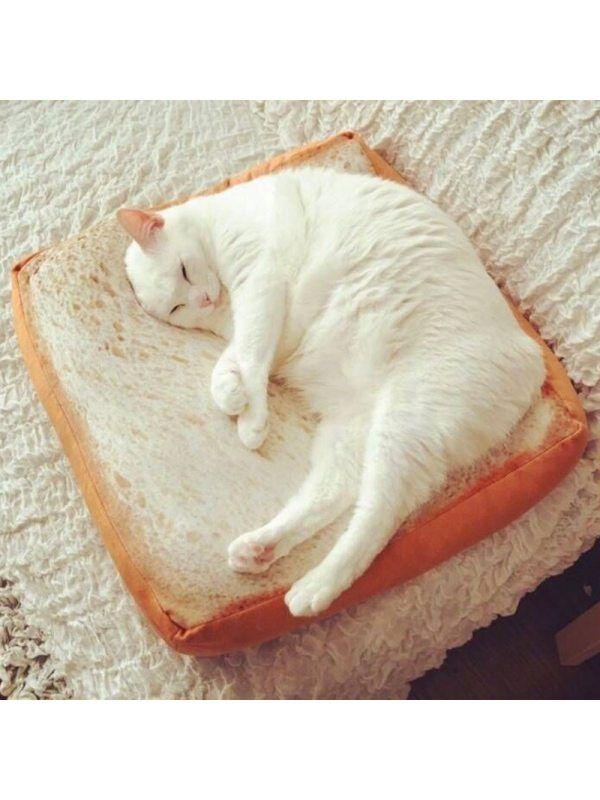 1 Celebrity Simulation Toast Bread Sliced Cat Pet Cushion
