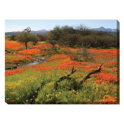 BrylaneHome Home On The Range Outdoor Canvas Art by BrylaneHome