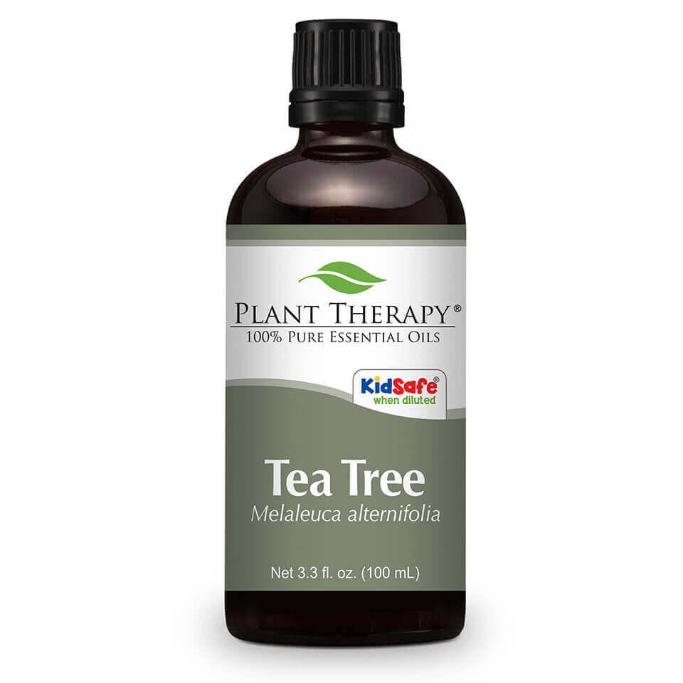 Plant Therapy Tea Tree Essential Oil 100 mL