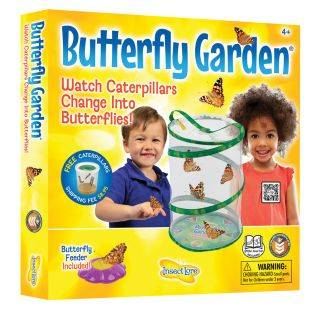 INSECT LORE Original Butterfly Garden   1 set by INSECT LORE