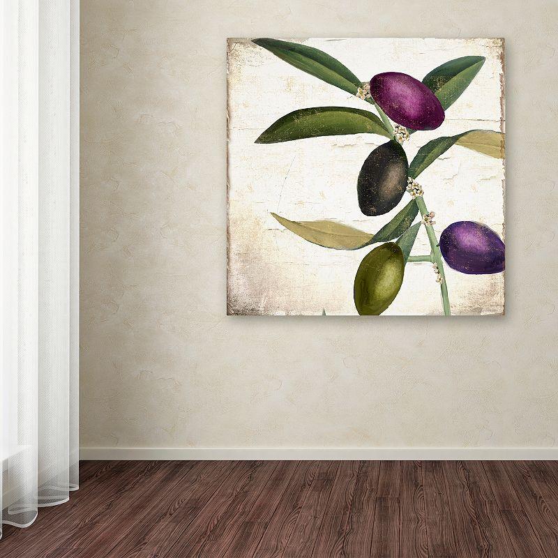"Trademark Fine Art Olive Branch II Canvas Wall Art, Green, 14""X14"""
