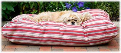 """Carolina Pet Company Indoor/Outdoor Striped Jamison Dog Bed - Red Striped - 27"""" x 36"""" x 4"""""""