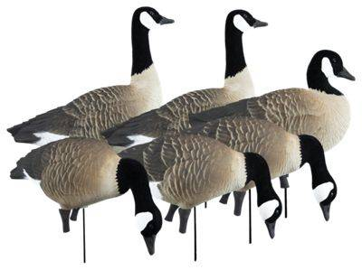 Higdon Outdoors Apex Full Size Canada Goose Decoy Variety Pack