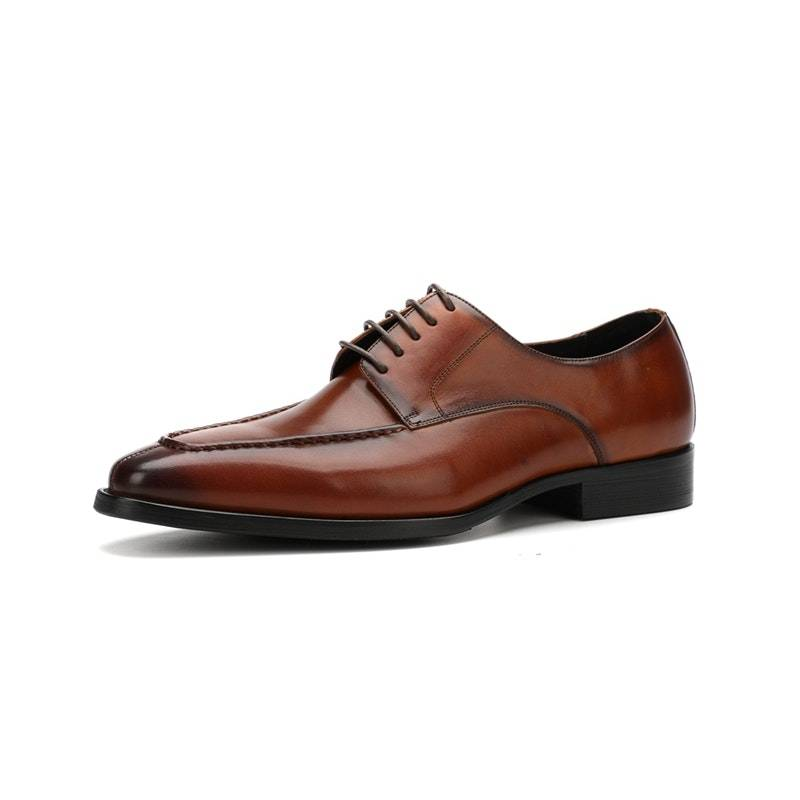 Men's Four Seasons Stylish Lace-up Leather Business Shoes02880brown9.5