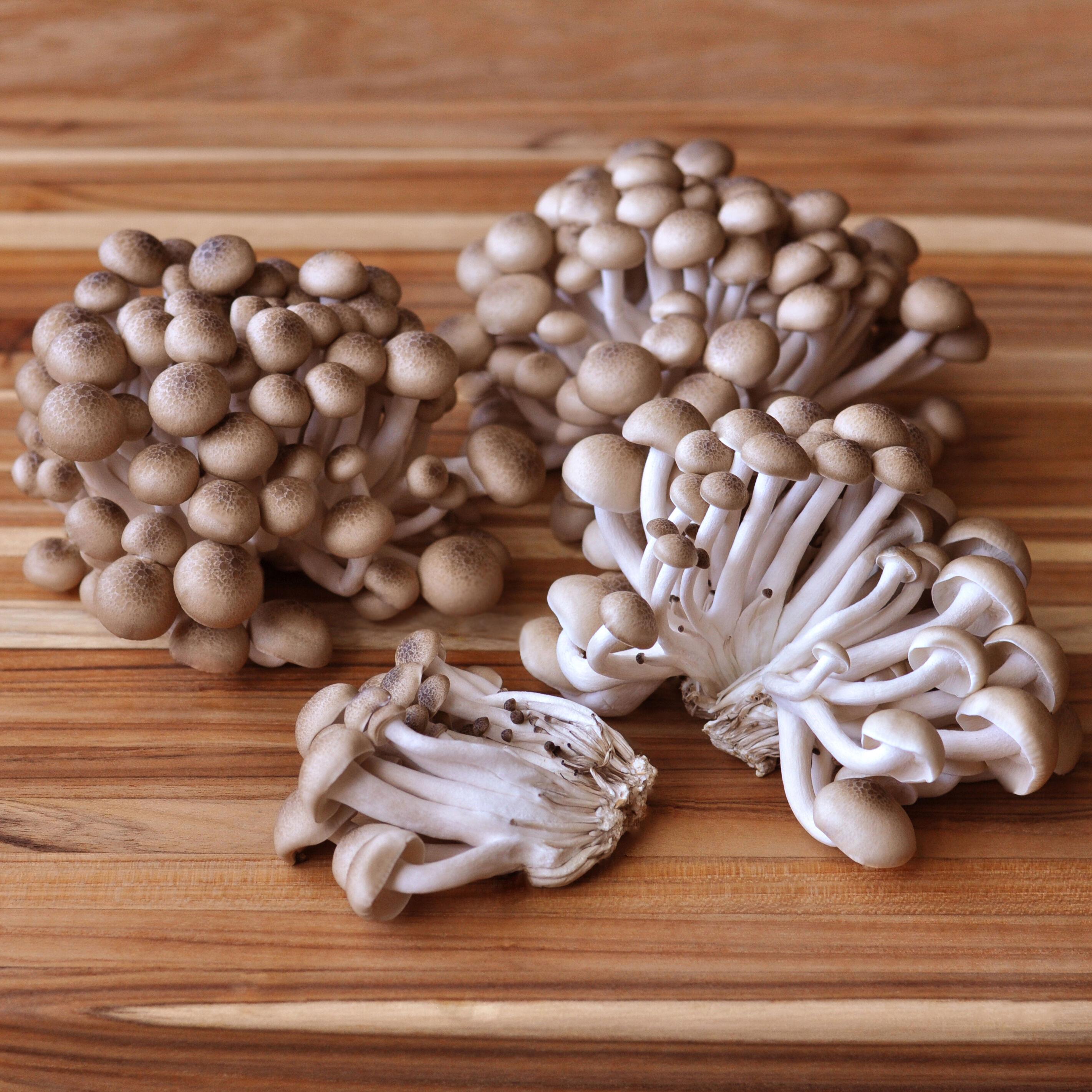 D'Artagnan Organic Hon-Shimeji Mushrooms: Fresh / 3lbs avg. each (Domestic) by D'Artagnan