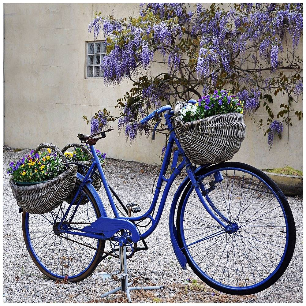 """West of the Wind Blue Bike 24"""" Square All-Weather Indoor-Outdoor Wall Art - Style # 10M16"""