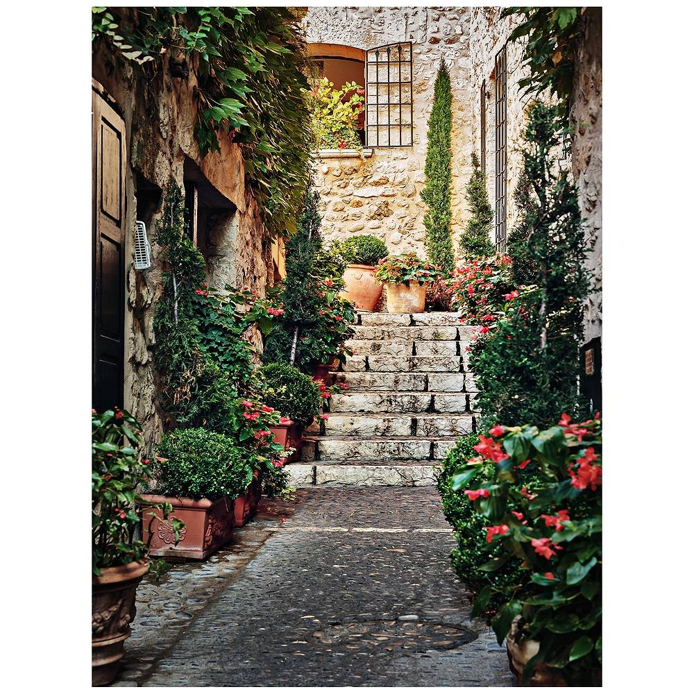 """West of the Wind Private Entry 40"""" High All-Season Outdoor Canvas Wall Art - Style # 11K99"""
