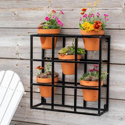 Spring Hill Nursery Potted Wall Display