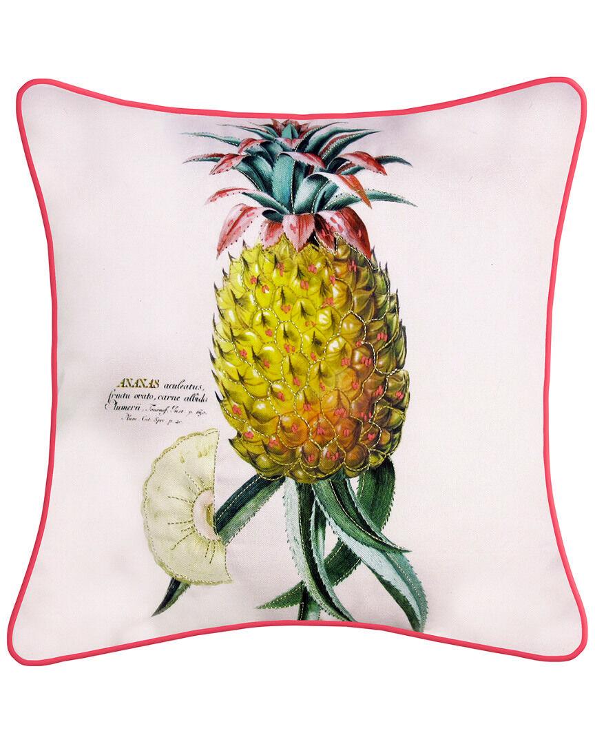 "NYBG New York Botanical Garden Pineapple Indoor/Outdoor Throw Pillow  -Multi - Size: 20"" x 20"" x 6"""