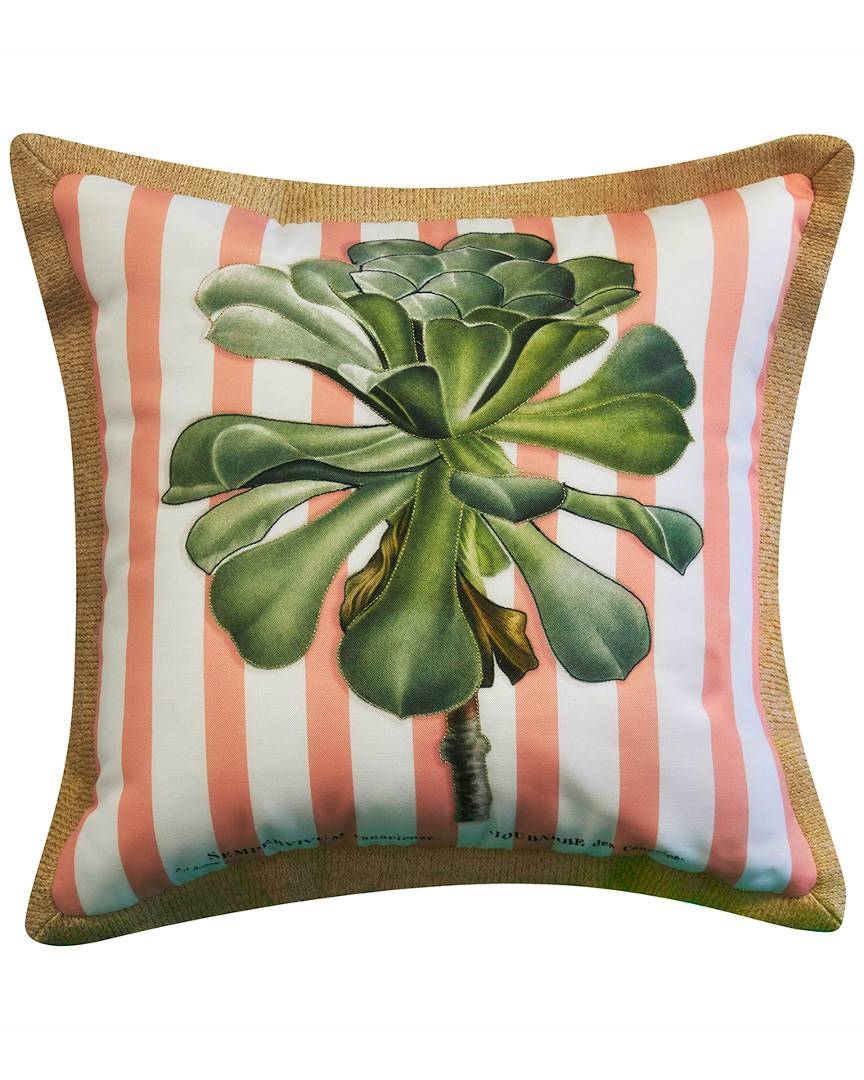 """NYBG New York Botanical Garden Succulent Indoor/Outdoor Square Throw Pillow  -Multi - Size: 20"""" x 20"""" x 6"""""""