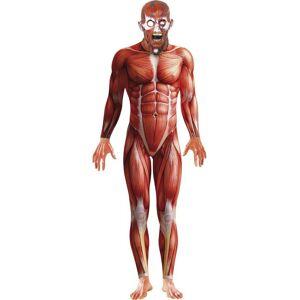 fc7d63bc9 Se TILBUD på Komplett Kostyme av Anatomi Mann med Maske hos ...