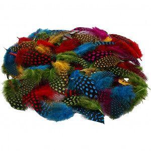 Diverse Perlehønsfjær, 50 g, ass. Farger