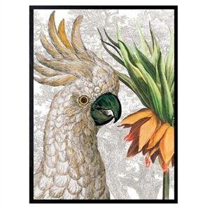 Vanilla Fly Poster Parrot Fritillaria