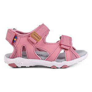 Kavat Rio Tx Pink Pink 24