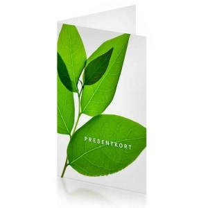 Naturligt Snygg Presentkort i Naturligt Snygg webbshop - 750 kr