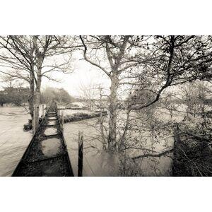 Flooding on the River South Esk Fototapeter & Tapeter 100 x 100 cm