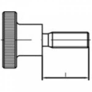 TOOLCRAFT 107539 Knurl skruer M4 6 mm DIN 464 stål sink galvanisert 50 eller flere PCer
