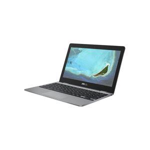 Asus Chromebook 12 C223NA-GJ0007