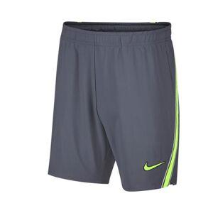 Nike Dri-Fit Flex Ace 7'' Rafa Shorts Light Carbon S