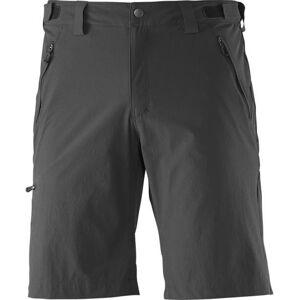 Salomon Wayfarer Shorts herre Black