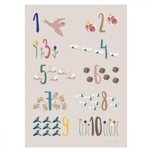 Sebra, Plakat 50x70, Singing Birds