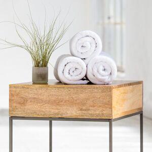 Tvättlapp Spa-Utförande I 100% Bomullsfrotté (3-Pack)