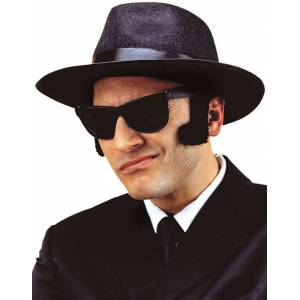 Svarta Blues Brothers Matta Wayfarerglasögon