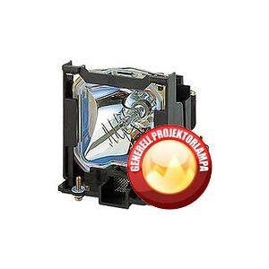 Dell Projektorlampe DELL S300w Originallampe med lampeholder - komplett modul