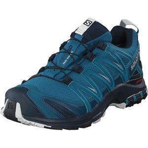 Salomon Xa Pro 3d Gtx Lyons Blue/navy Blazer/lunar R, Sko, Sneakers & Sportsko, Vandresko, Blå, Turkis, Unisex, 41