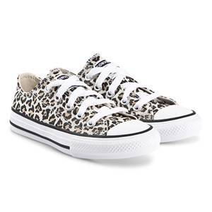 Converse Leopard Chuck Taylor Sneakers Drift Wood Lasten kengt 30 (UK 12)