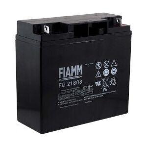 APC FIAMM Batteri til USV APC RBC55