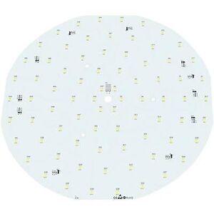 Barthelme 5076 3233 LED-komponent hvit EØF: A + (A + +-E) 34,32 W 3566 lm 120 ° 24 V