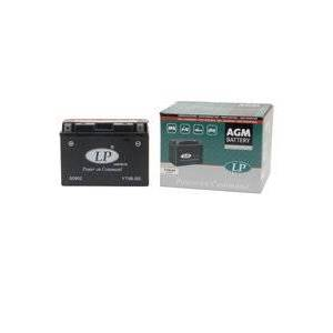 Yamaha Landport Yamaha XT 660 R (DM014) batteri (8000 mAh, Originalt)