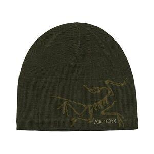 Arc'teryx Bird Head Toque Hat Anecdote/Tatsu men One size Grøn