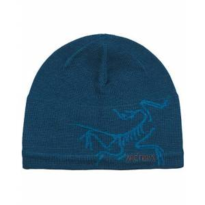 Arc'teryx Bird Head Toque Hat Magician men One size Grøn