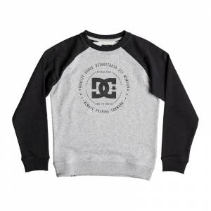 DC REBEL BOYS RAGLAN CREW Grey Heather - 16år