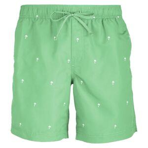 Bula Men's Scale Shorts Grønn