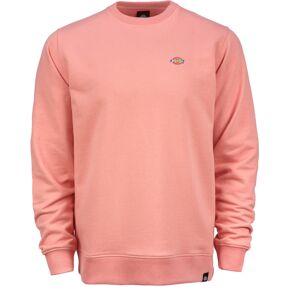 Dickies Seabrook Sweatshirt Rosa S